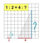 Hoe bereken je een verhouding?