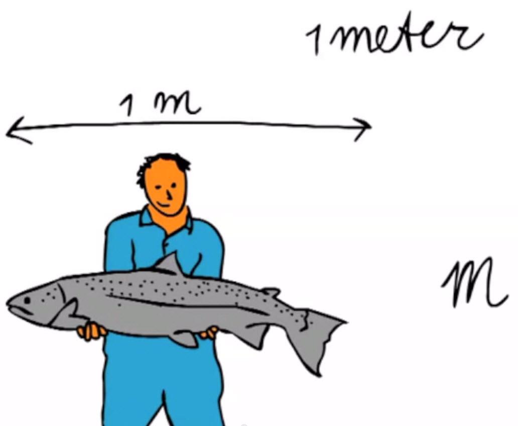 Rekenen groep 4: Lengtematen 1 - Meter en centimeter
